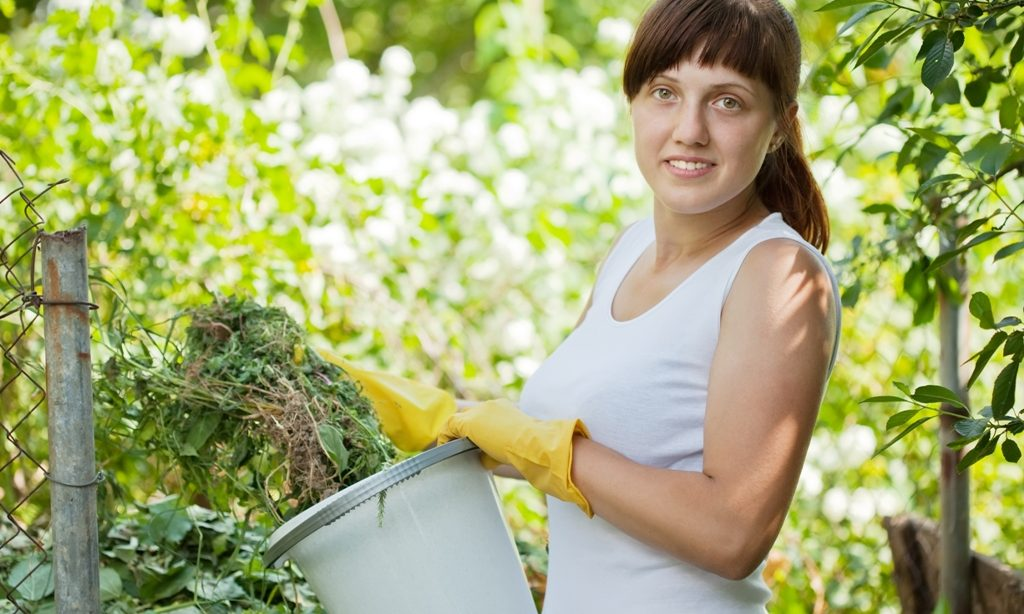 10 nepravdivých mýtov o kompostovaní
