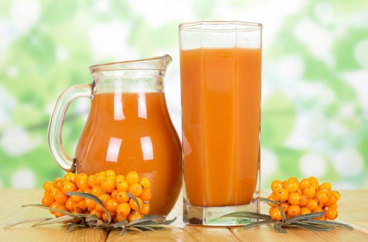 Rakytník rešetliakovitý – citrus severu