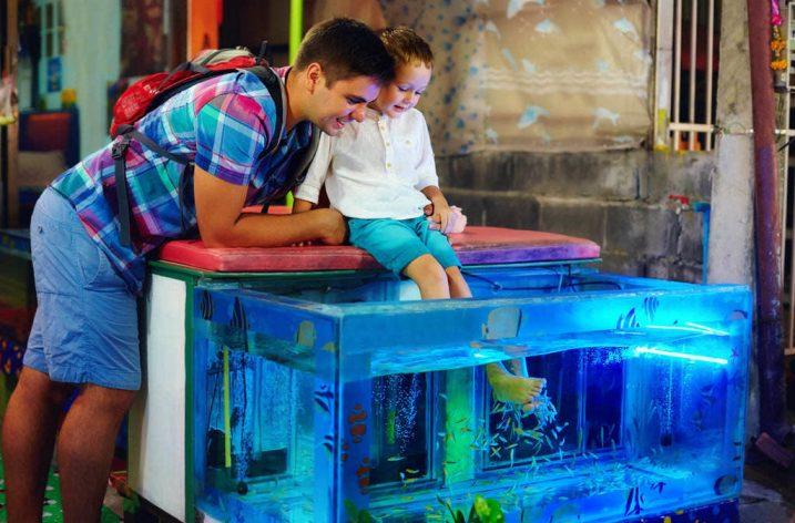 Ichtyoterapia – rybky liečiteľky