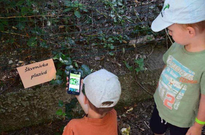 Appku na určovanie rastlín napĺňali deti