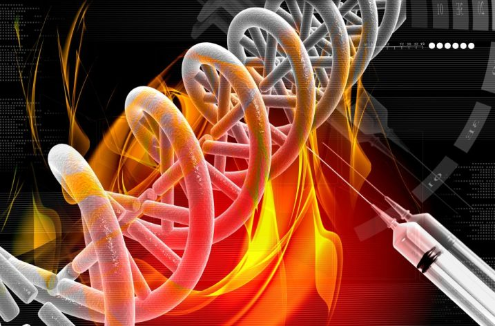 Návnada: naša vlastná DNA