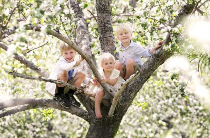 Dobrý súrodenecký vzťah – hodnota na celý život 1)