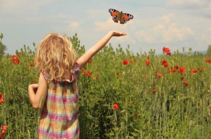 ♪ Alžbetka a klimatické zmeny. Láska k motýľom