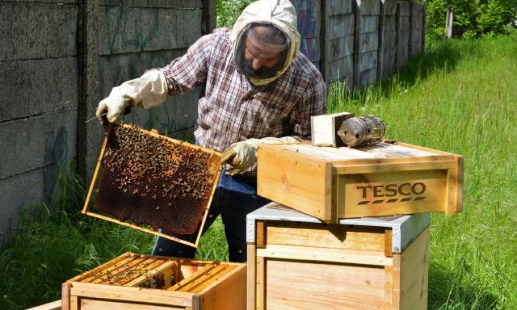 Tesco prekvapilo včelími úľmi pri obchode, pripomenulo si tak Svetový deň životného prostredia